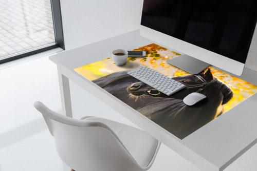 schreibtischunterlage f r kinder archive deskpad. Black Bedroom Furniture Sets. Home Design Ideas