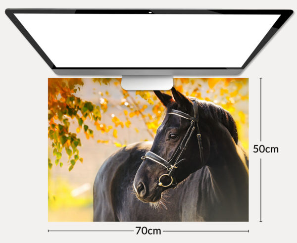 Schreibtischunterlage Pferd