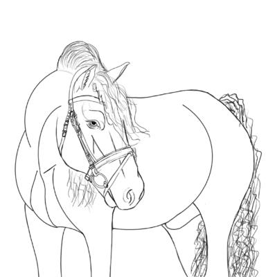pferd ausmalbild